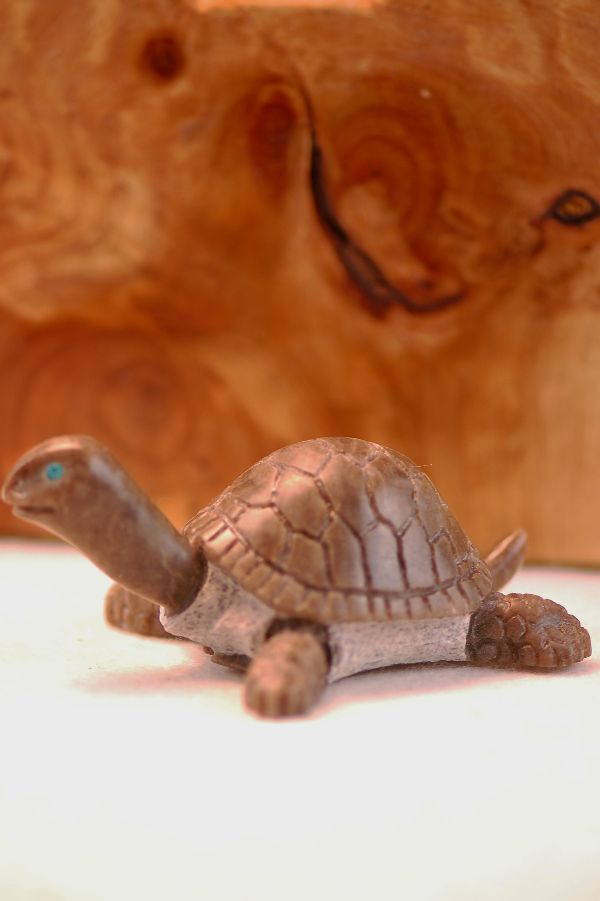 Navajo – Hand Carved New Mexico Alabaster Turtle Fetish by Harold Davidson