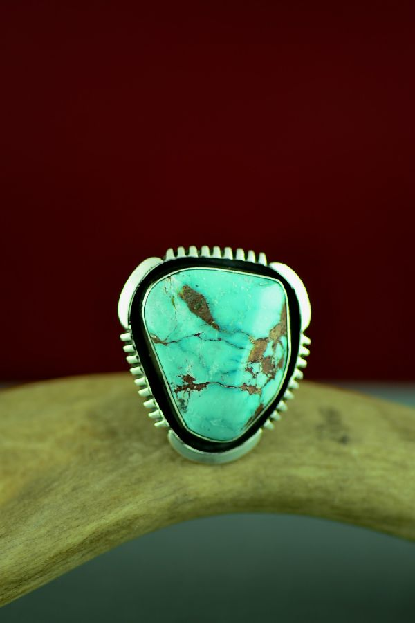 Navajo Sterling Silver Fox Turquoise Ring Will Denetdale Size 10